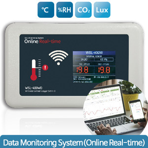 데이터 온라인 모니터링 Data Monitoring System(Online Real-time)